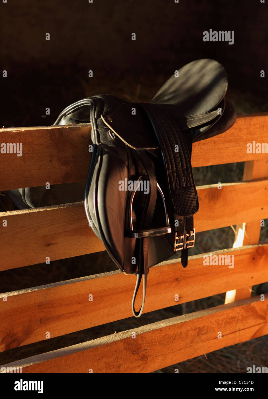 Old English Saddle - Stock Image