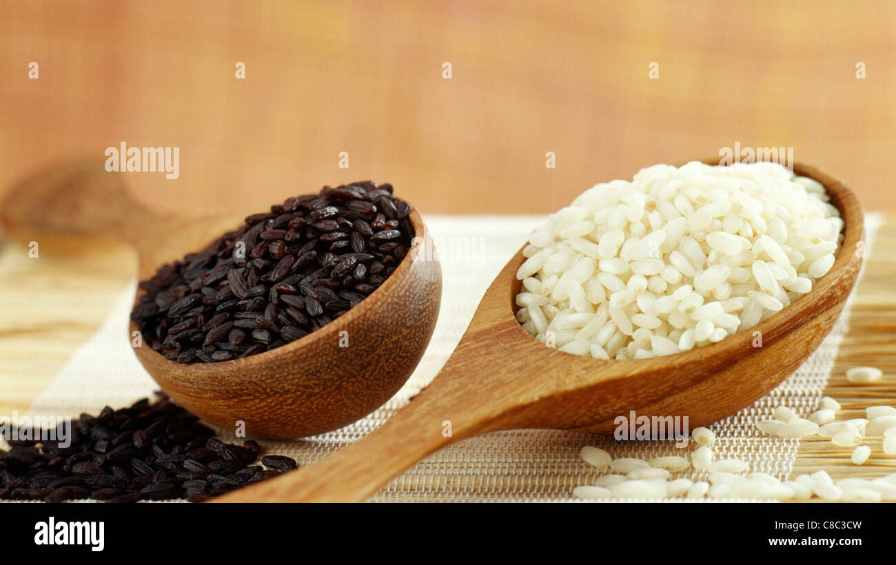 spoonfuls of black sticky rice and pudding rice - Stock Image