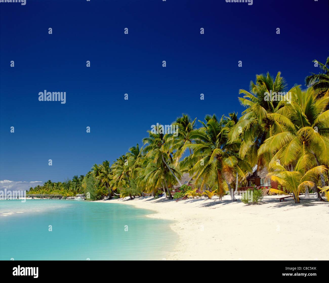 Cook Islands Beaches: Atoll, Palm Trees & Tropical Beach, Aitutaki Island, Cook