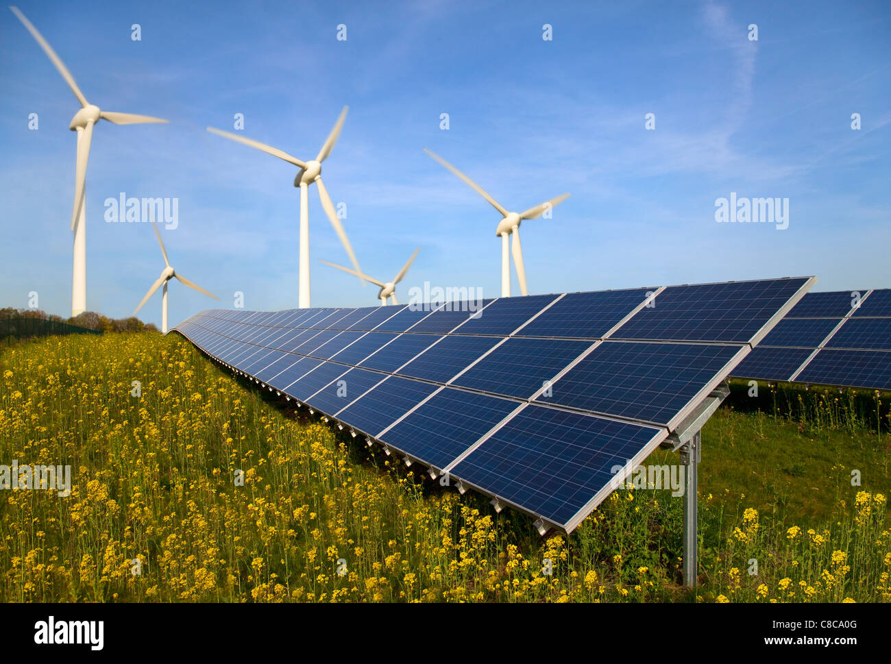 Solar panels and wind turbines in field - Stock Image