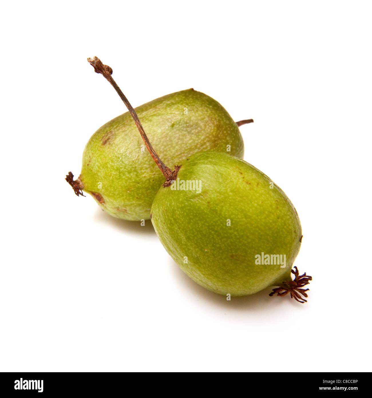 Kiwiberry or hardy kiwi  fruit isolated on a white studio background. - Stock Image