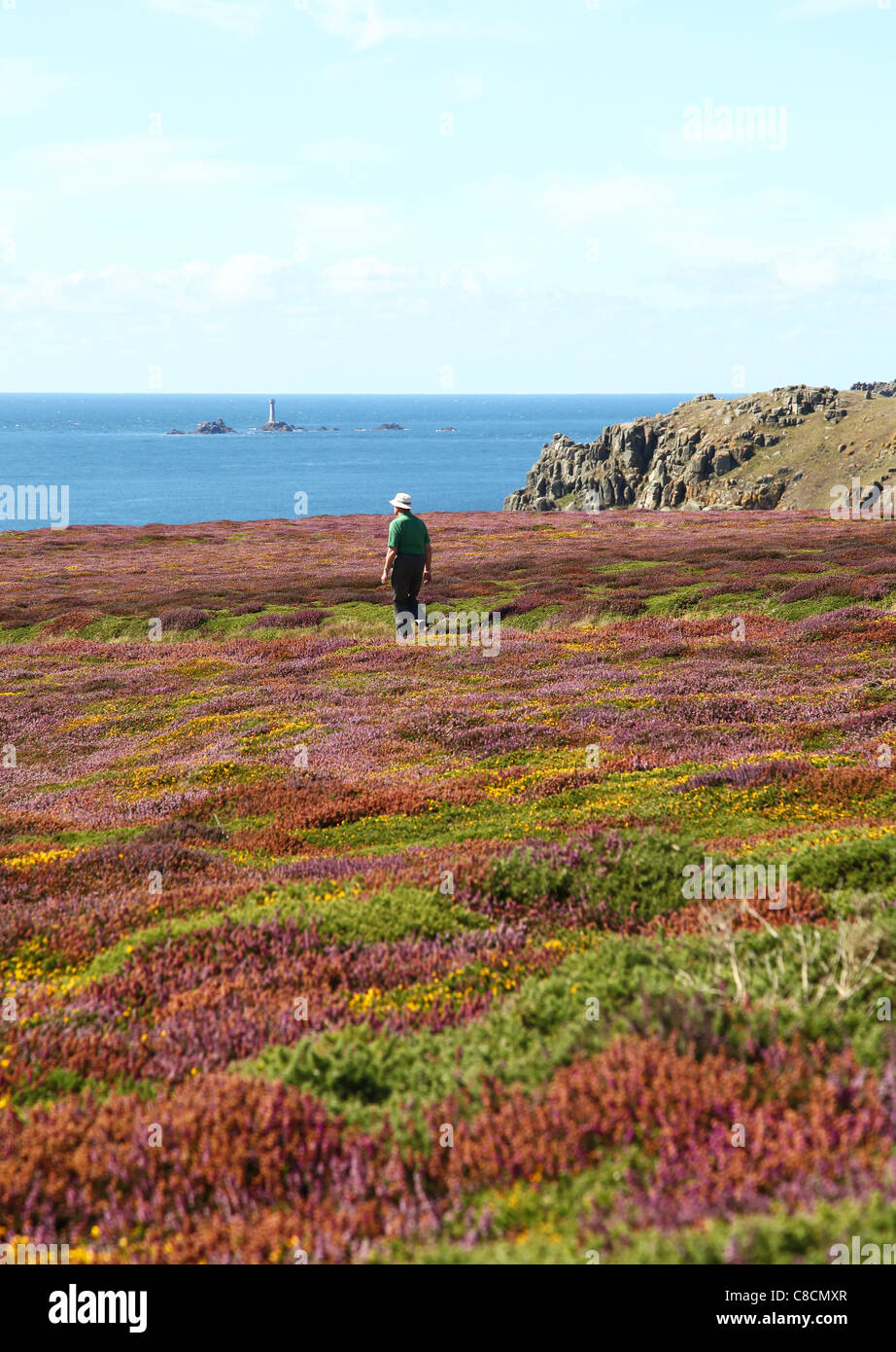 A man walking at Gwennap Head with The Longships Lighthouse in the background near to Porthgwarra, Cornwall, England, - Stock Image