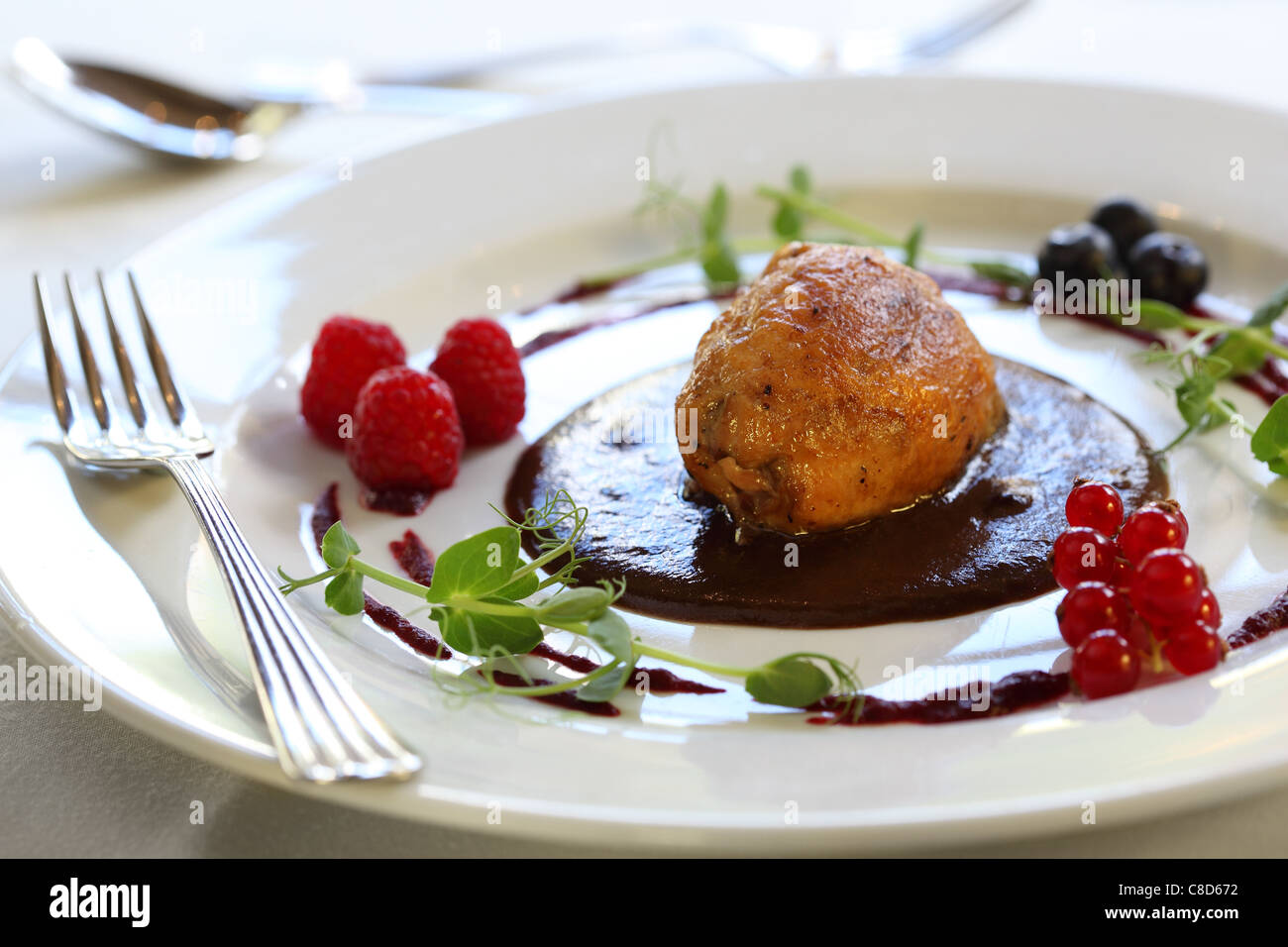 chicken roll with chocolate souse and berries - Stock Image
