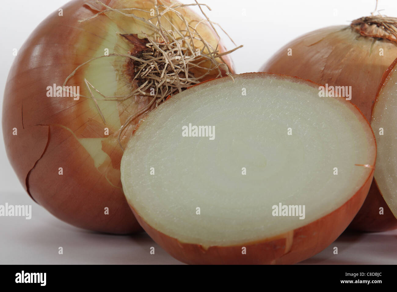 Close up of a freshly cut onion - Stock Image