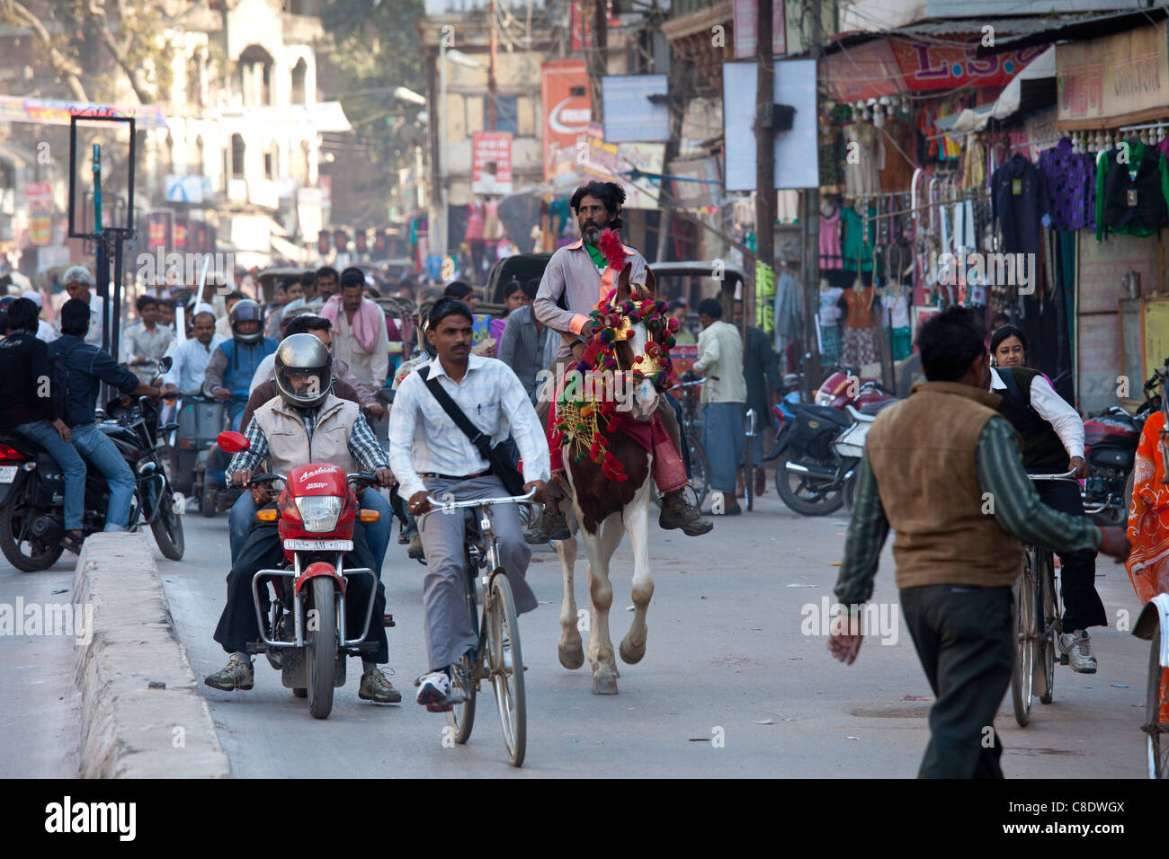 Busy street scene in holy city of Varanasi, Benares, Northern India - Stock Image