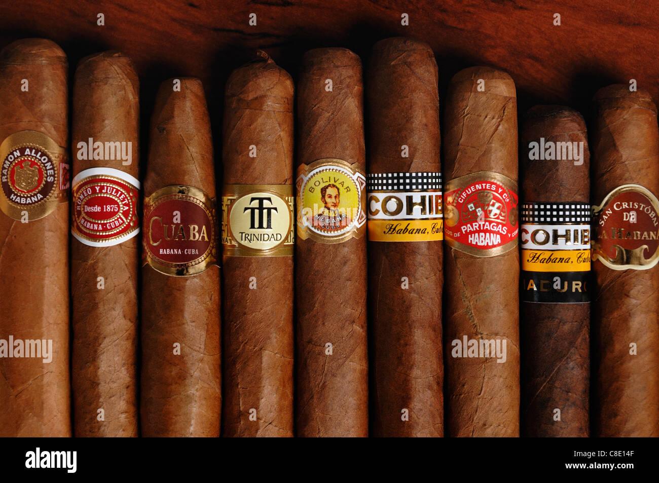Cuban Cigars - Stock Image