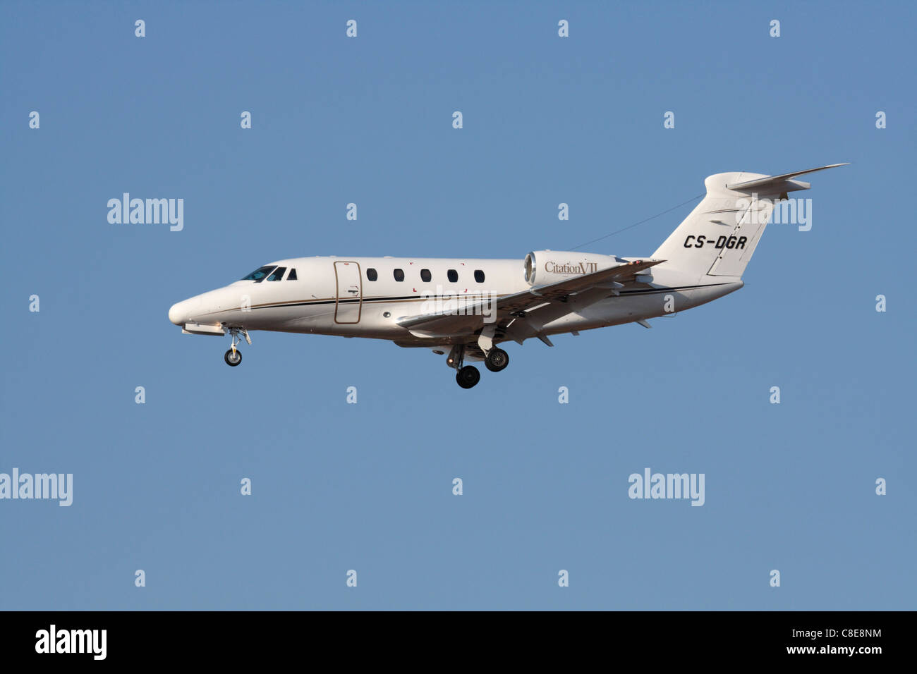 VIP transportation by air. Cessna Citation VII business jet operated by Airjetsul - Stock Image