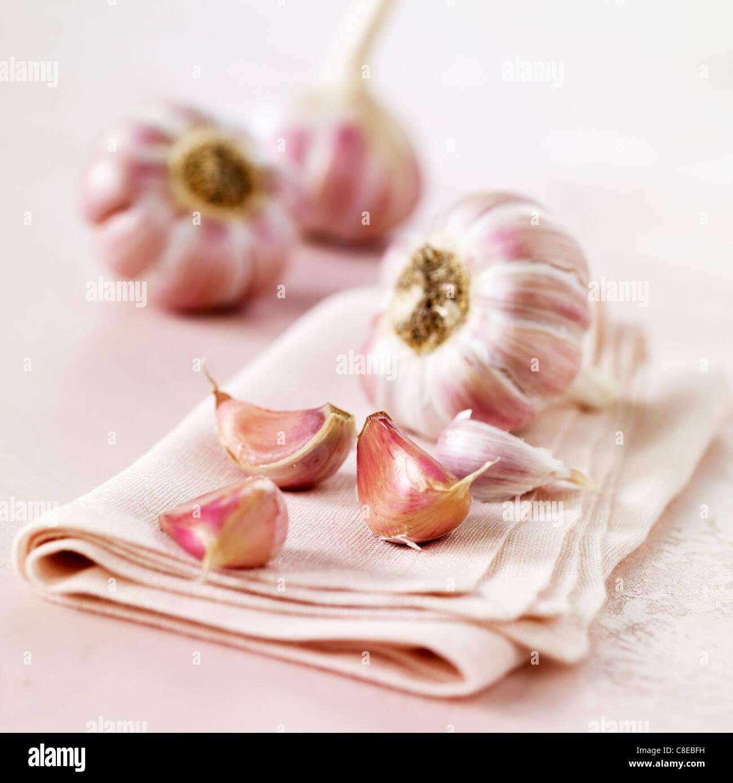 Head of pink garlic - Stock Image