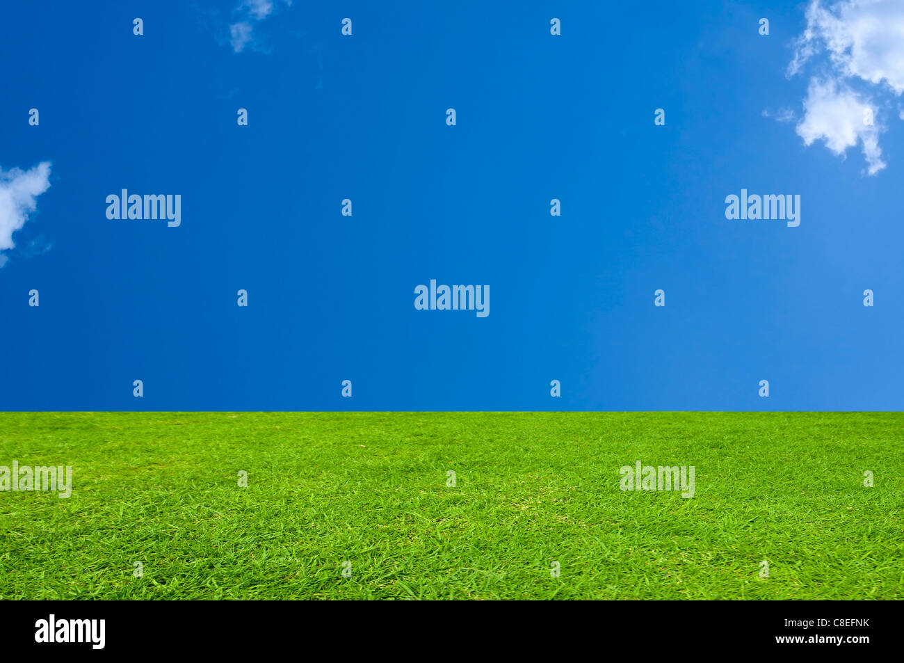 Emerald Green Grass with a Cerulean Blue Sky. - Stock Image