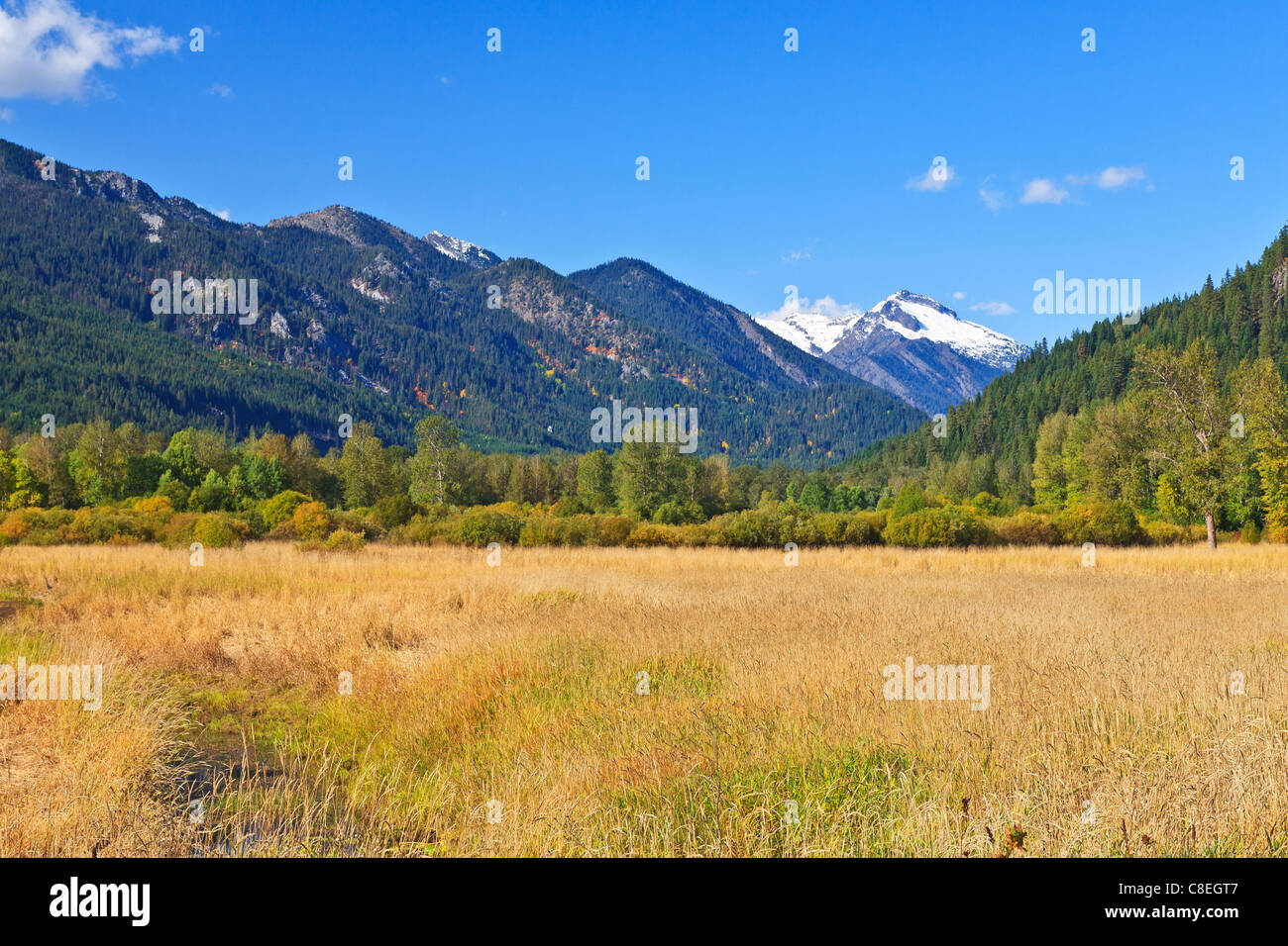Grassy field in the Fall season with early snow in the high mountains - Stock Image