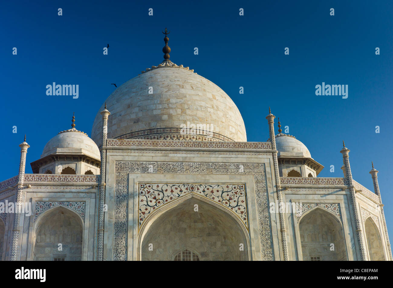 Taj Mahal mausoleum with birds flying, southern view detail of iwans with bas relief marble, Uttar Pradesh, India - Stock Image