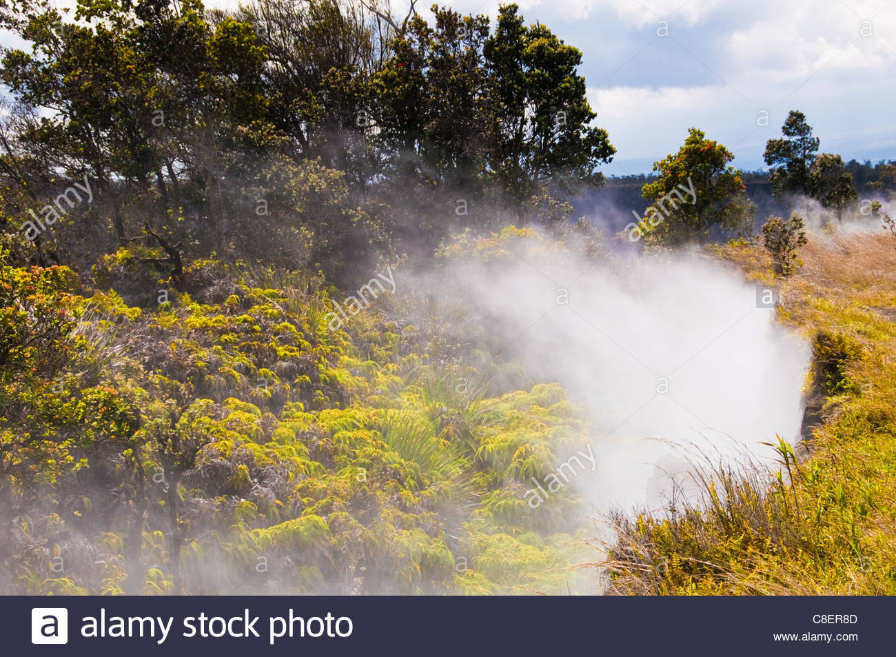 Steam vent near the crater of Kilauea volcano. - Stock Image