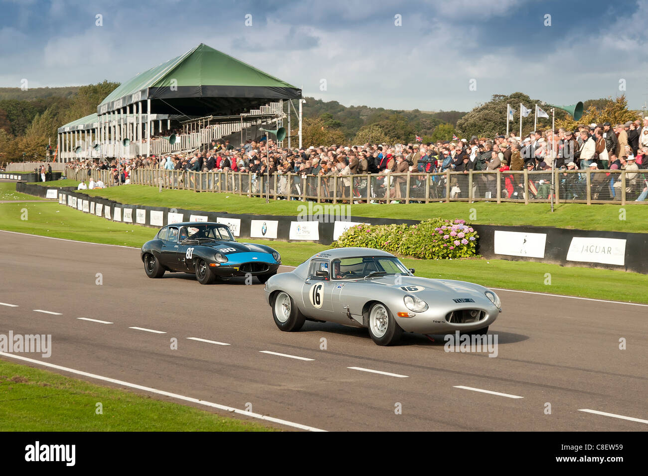 E type Jaguar's racing at Goodwood - Stock Image