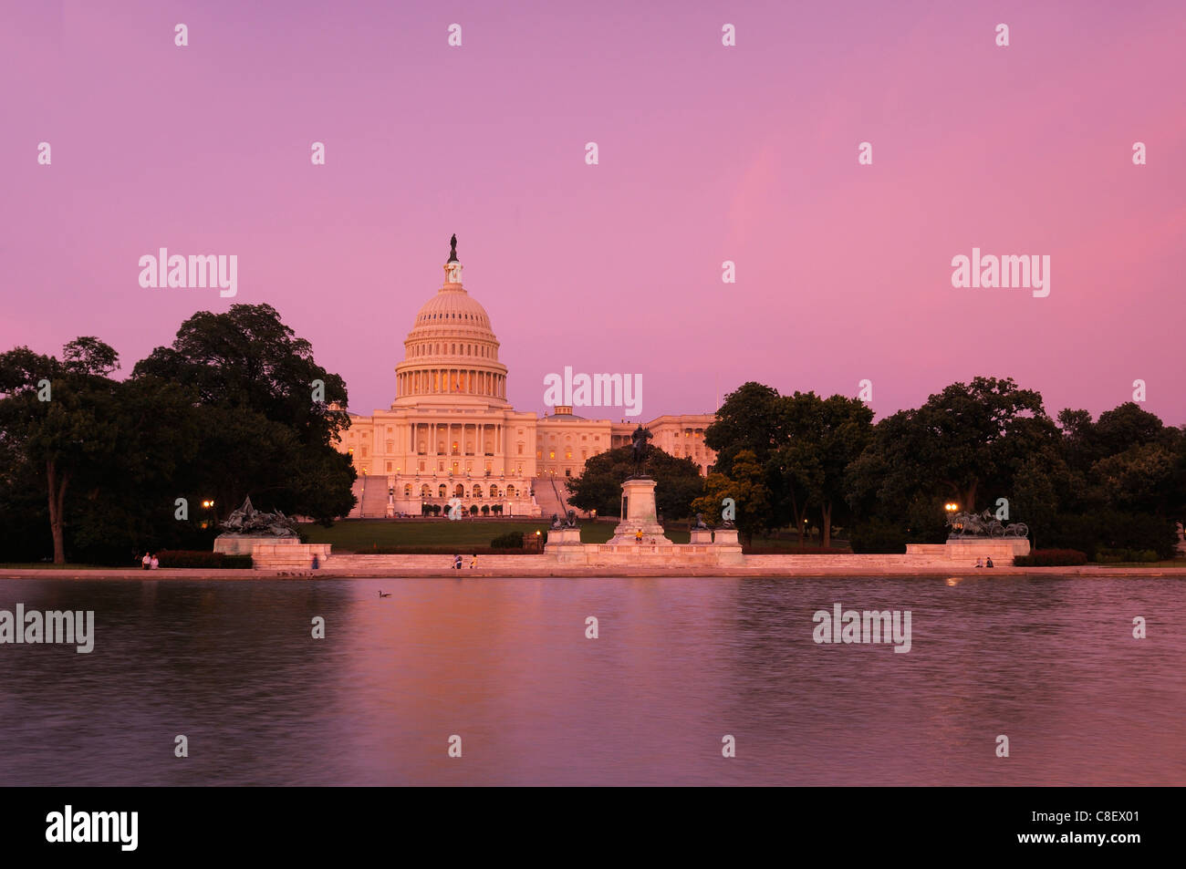 U.S., Capitol, Capitol, Reflecting, Pool, The Mall, Washington D.C., District of Columbia, USA, United States, America, - Stock Image