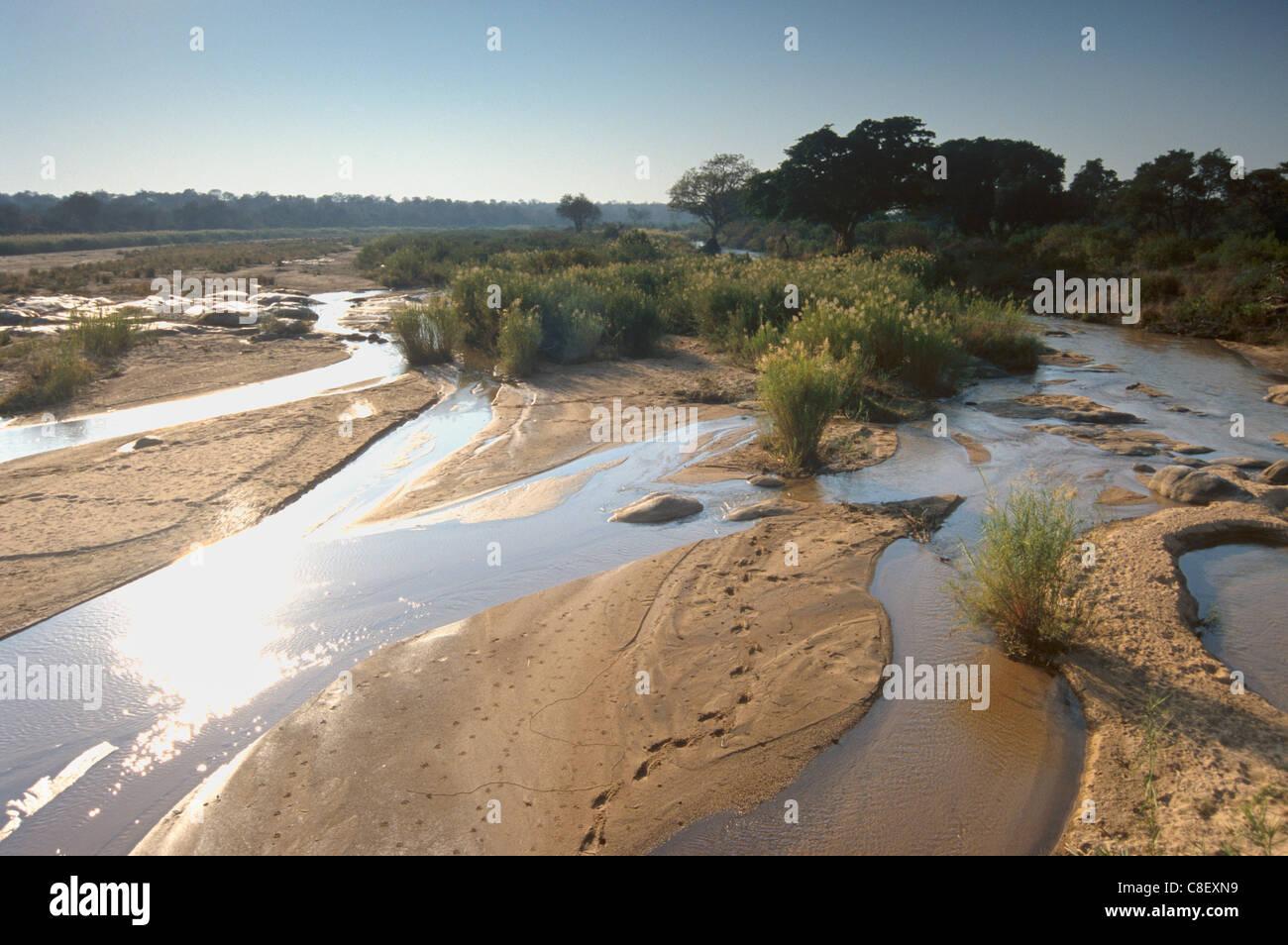 Olifants river, Kruger National Park, South Africa - Stock Image