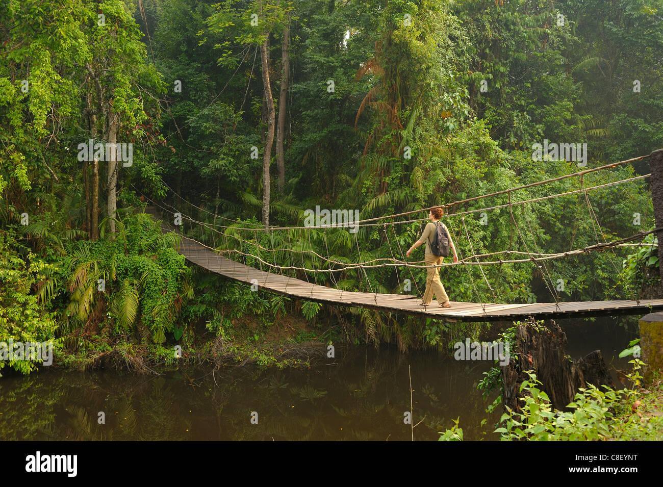 Suspension Bridge, primitive, woman, Creek, Khao Yai, National Park, World Heritage, Site, Thailand, Asia, river - Stock Image