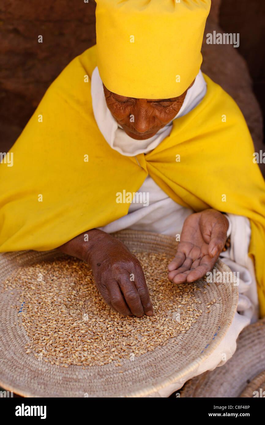 Nun sorting wheat in Bet Maryam church courtyard, Lalibela, Wollo, Ethiopia - Stock Image