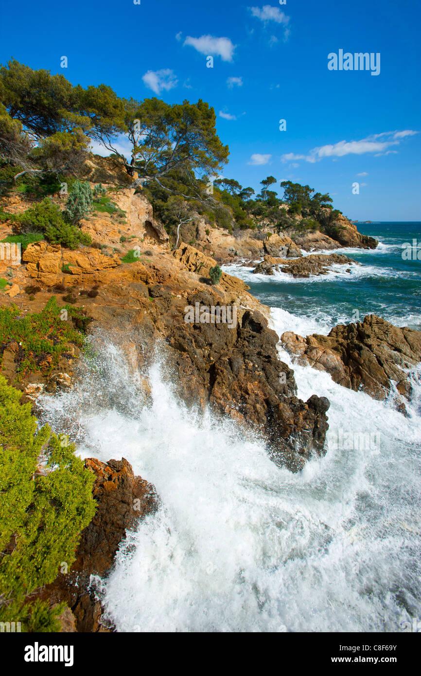 Point de Layet, France, Europe, Côte d'Azur, Provence, Var, sea, Mediterranean Sea, coast, rock, cliff, - Stock Image