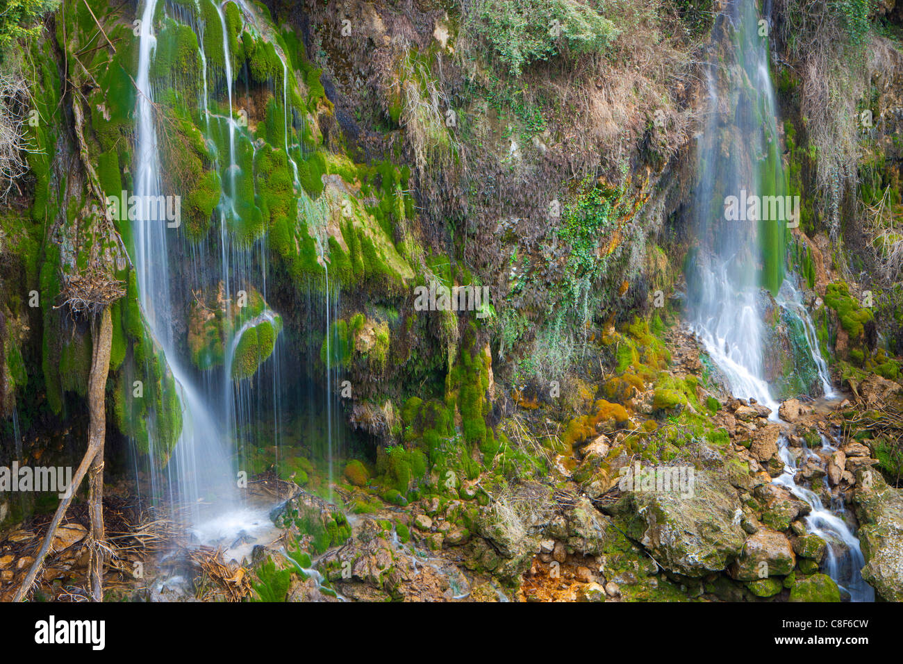 Saut du Loup, France, Europe, Provence, Alpes-Maritimes, brook, waterfall, cascade, rock, cliff, tuff stone, moss - Stock Image