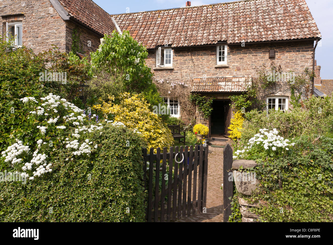 A typical Exmoor cottage in the village of - Stock Image
