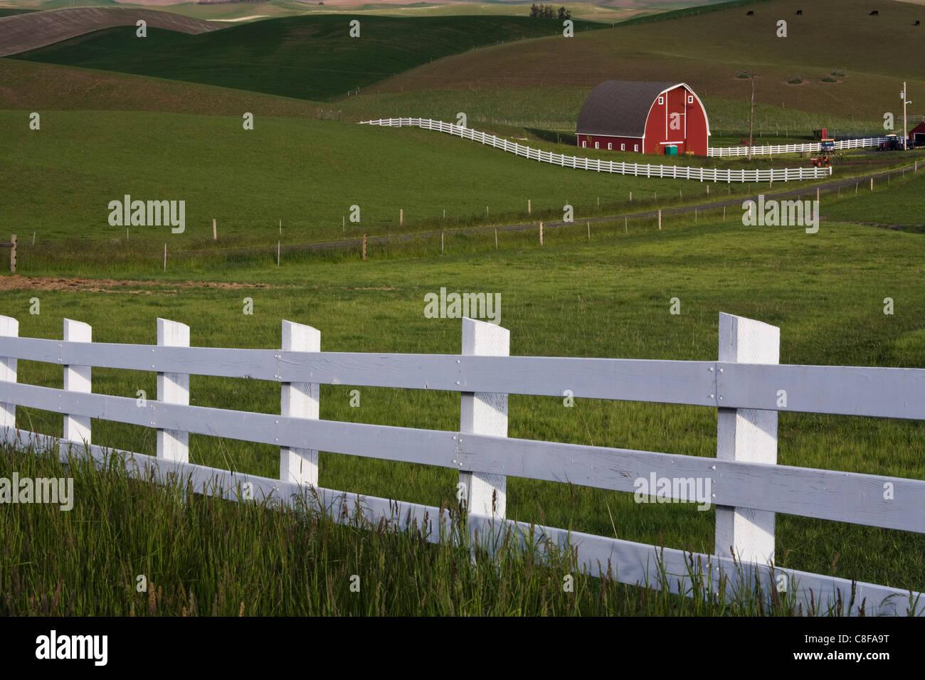 Barn in the Palouse, Washington State, United States of America - Stock Image