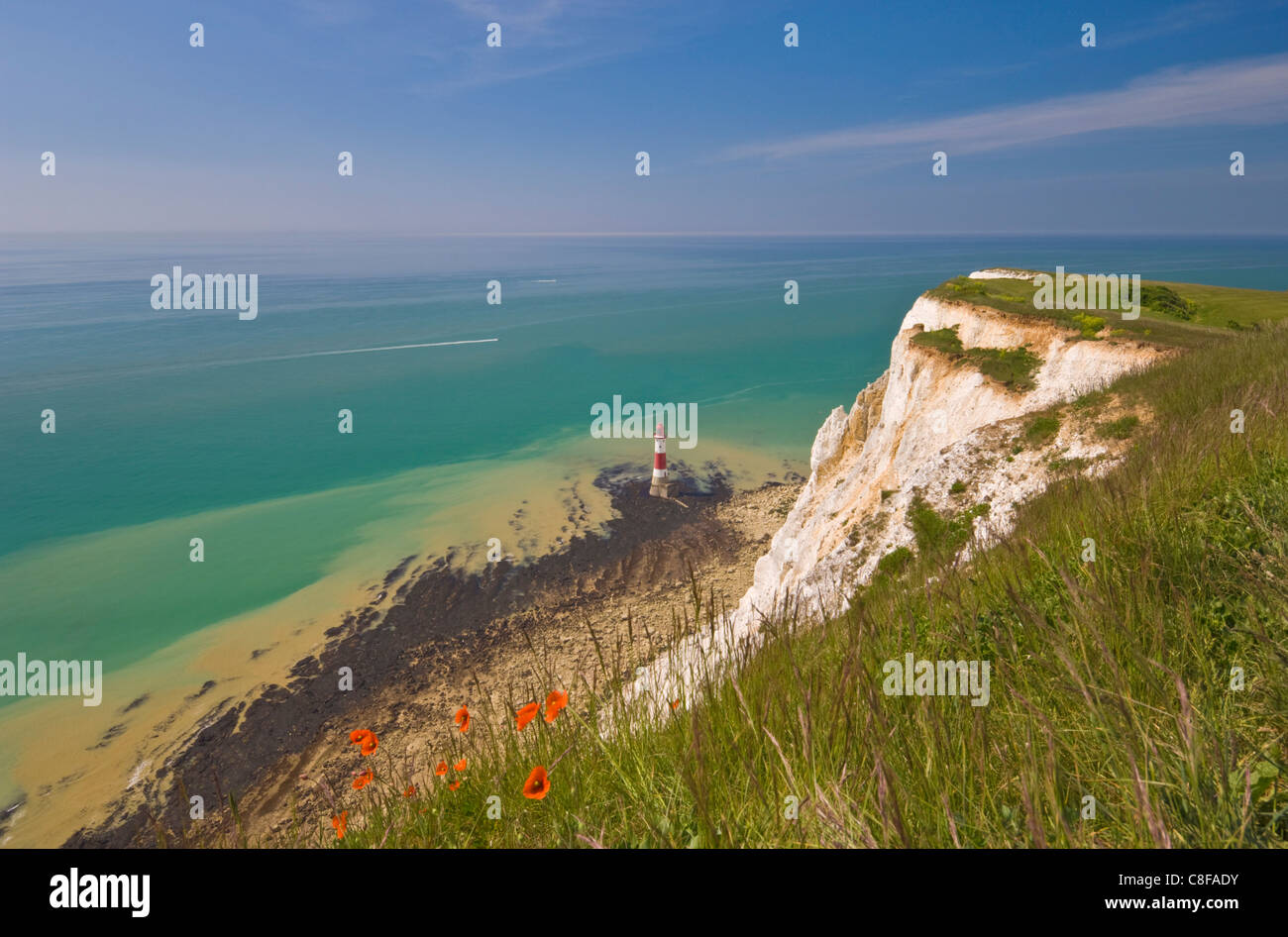 Beachy Head lighthouse, white chalk cliffs, poppies and English Channel, East Sussex, England, United Kingdom - Stock Image