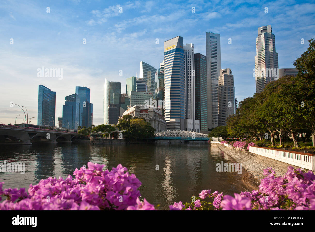Singapore, Asia, Downtown, Skyline, blocks of flats, high-rise buildings, skyscrapers, flowers, park, shore - Stock Image