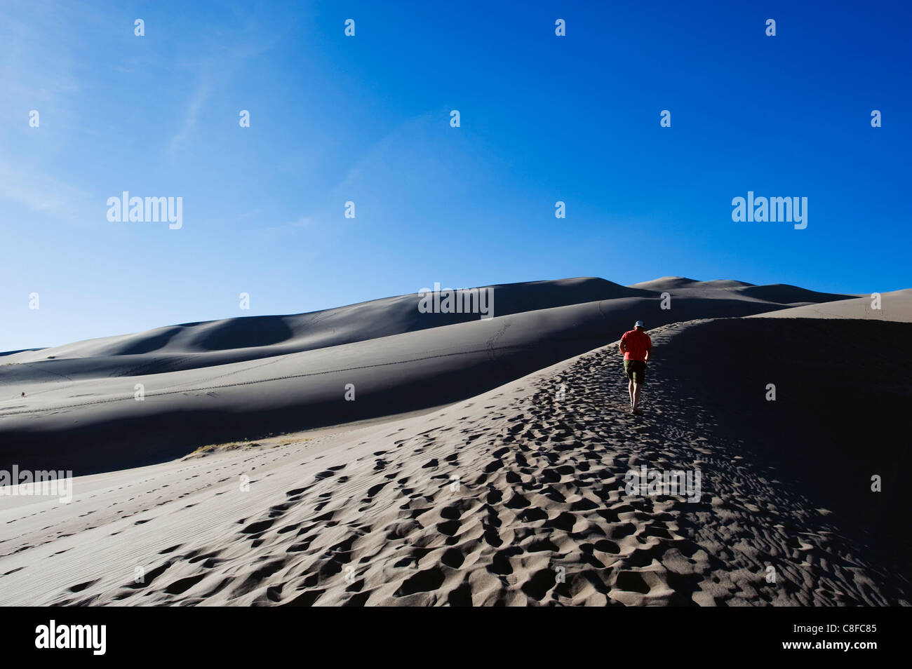 Hiker at Great Sand Dunes National Park, Colorado, United States of America, North America - Stock Image