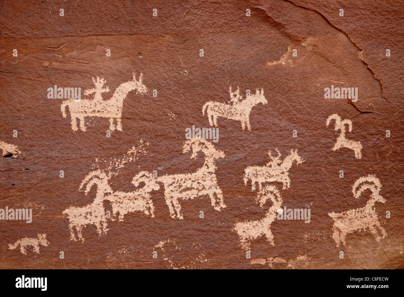 Bighorn hunt petroglyph panel, Arches National Park, Utah, United States of America - Stock Image