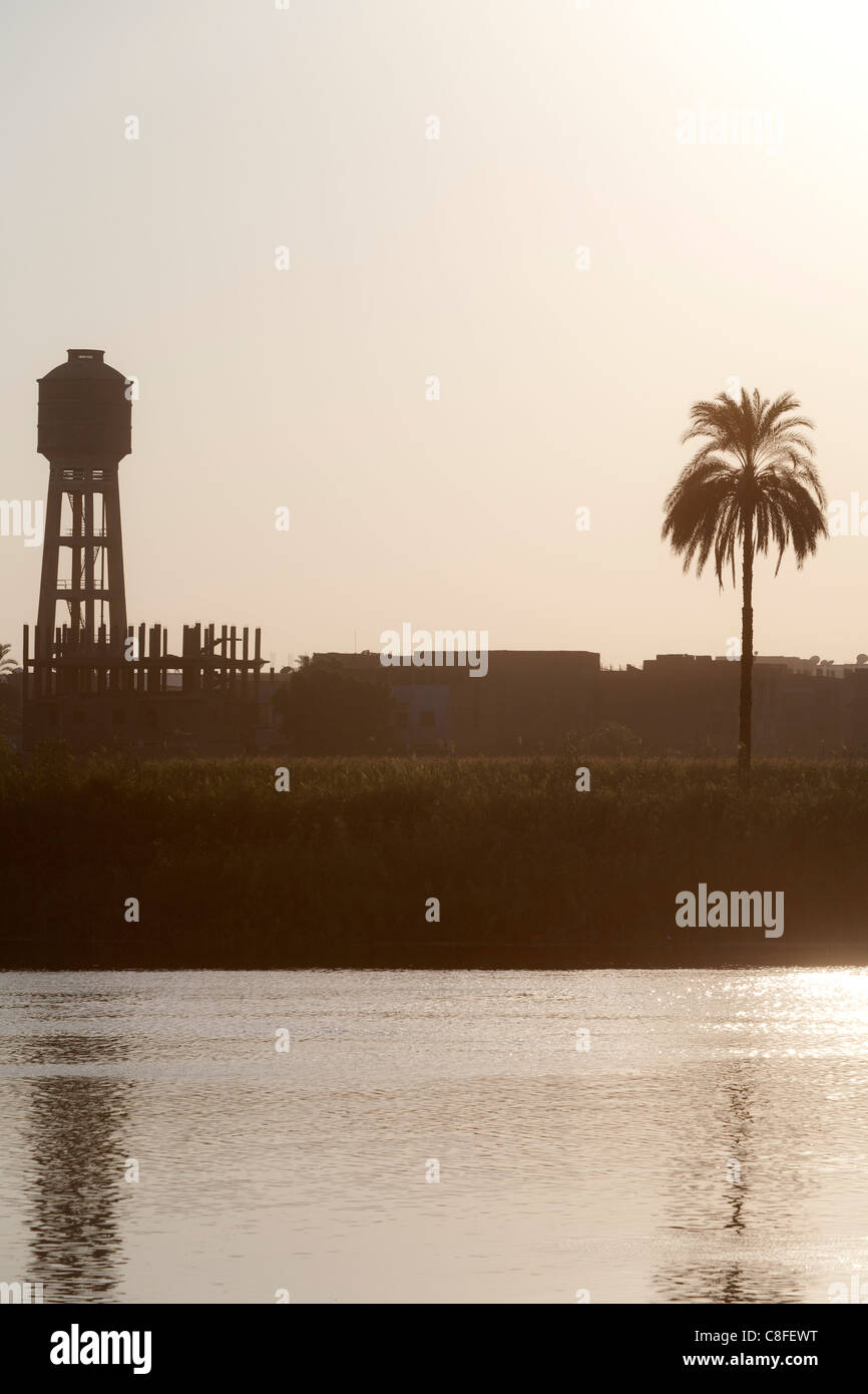 A section of Nile river bank with sun setting behind a palm tree and water tower creating muted colours reflected - Stock Image