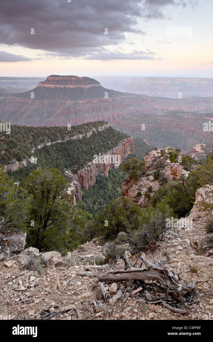 Steamboat Mountain at dawn from Fence Point, North Rim, Grand Canyon, Kaibab National Forest, Arizona, United States Stock Photo