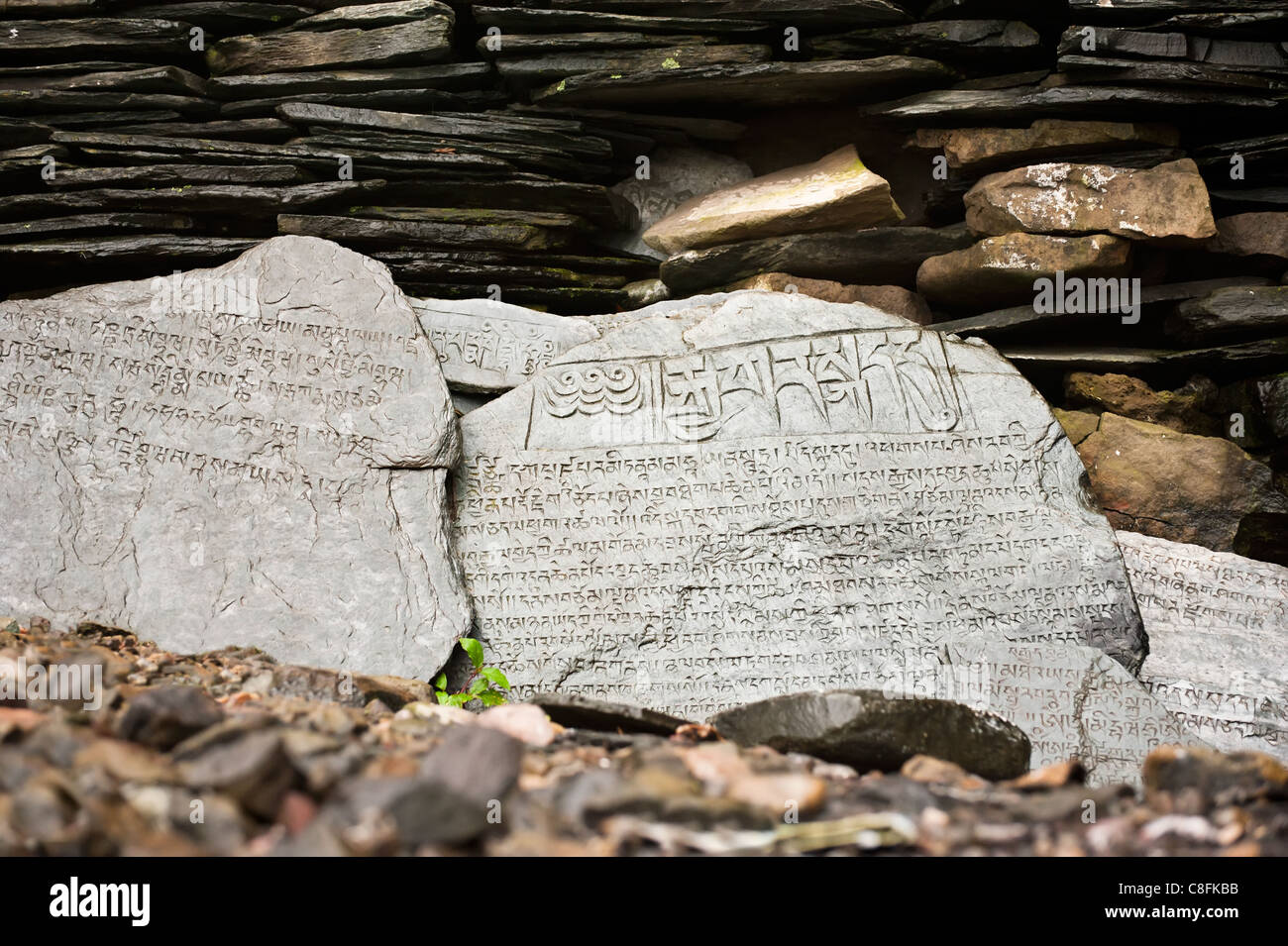 Buddhist prayer stone with mantra wet after rain Stock Photo