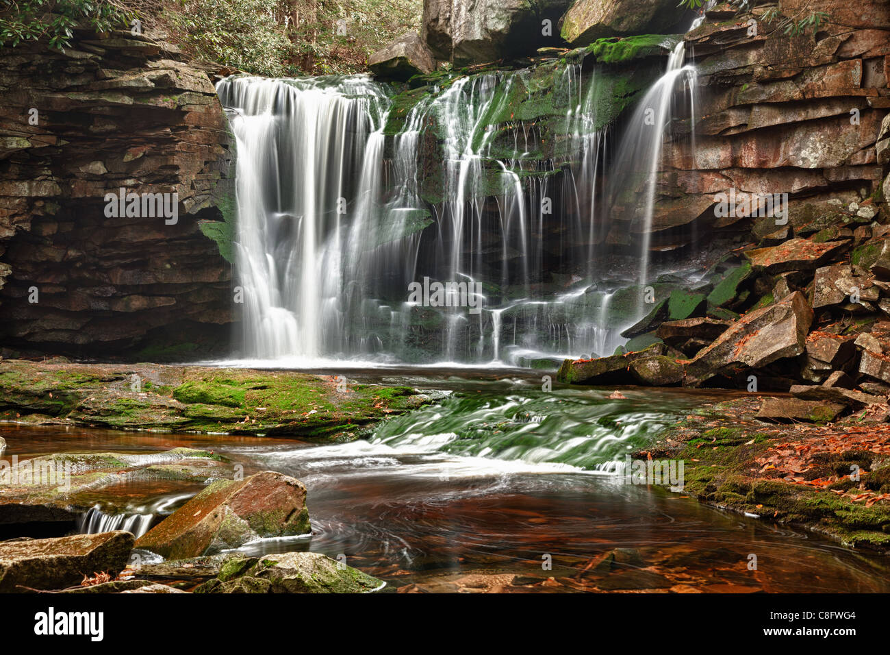 Elakala falls in Blackwater State park in West Virginia, USA - Stock Image