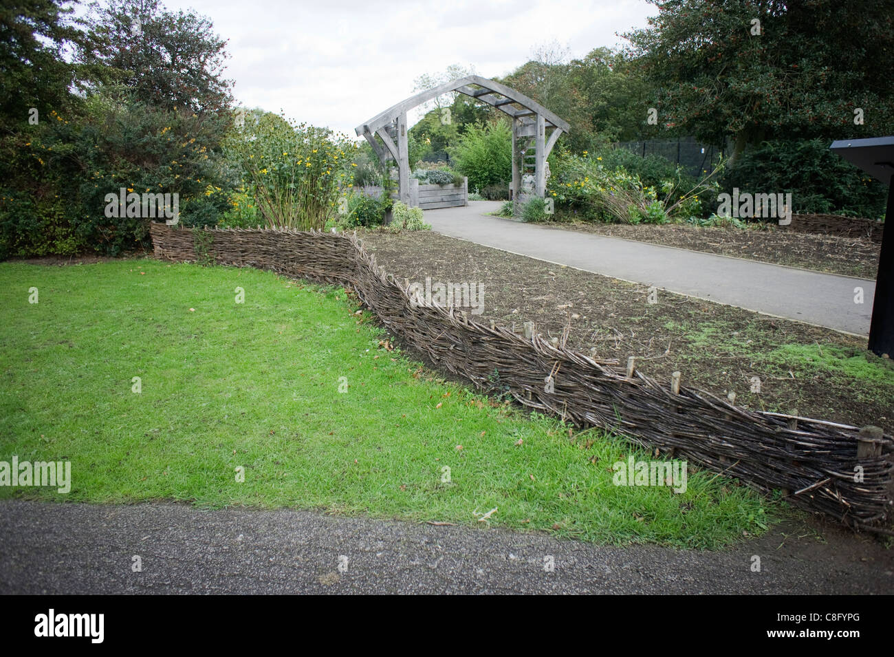 Small Curved Willow Latticed Fencing Dividing A Lawn From A Border   Stock  Image