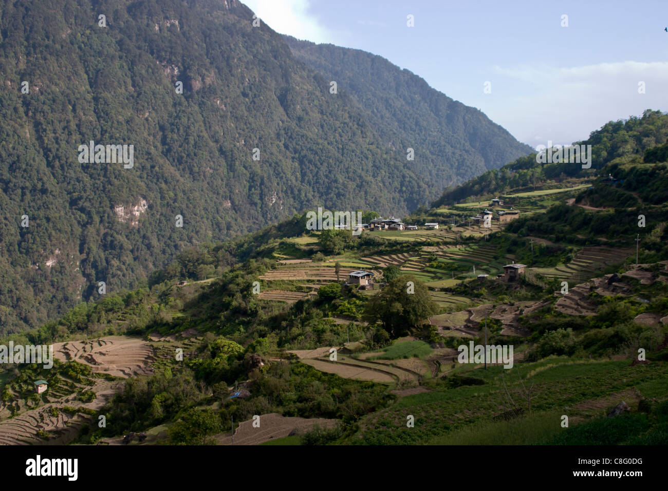 Terraced farmland below Gasa village with steep mountain and valley - Stock Image
