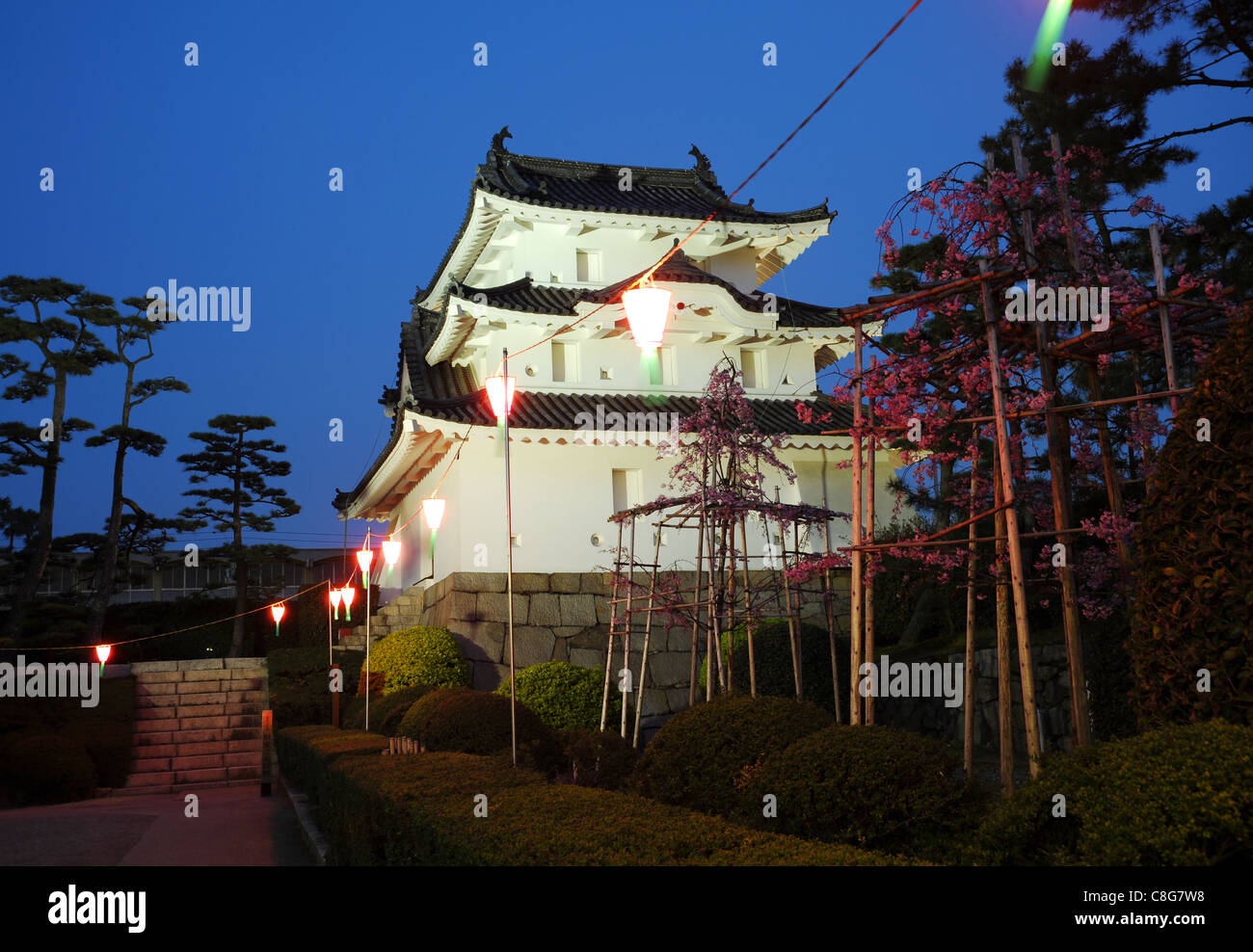 Night time view of the historic castle in japan Stock Photo
