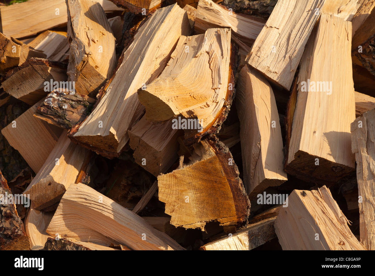 Wood burning fuel from a old tree, piles of logs to be split for open fires and wood burners to heat homes - Stock Image