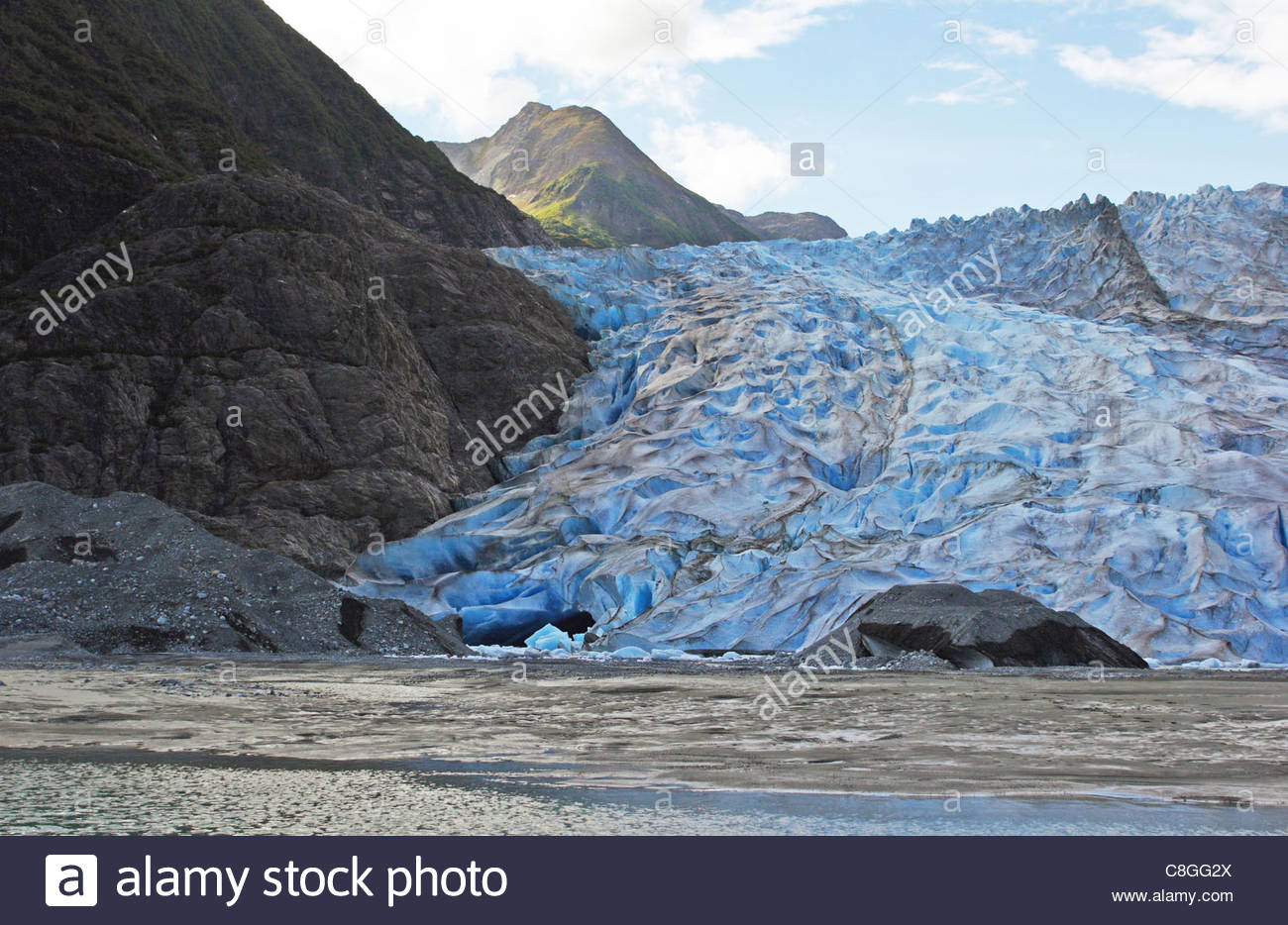 The terminus or advancing front of Davidson Glacier. - Stock Image