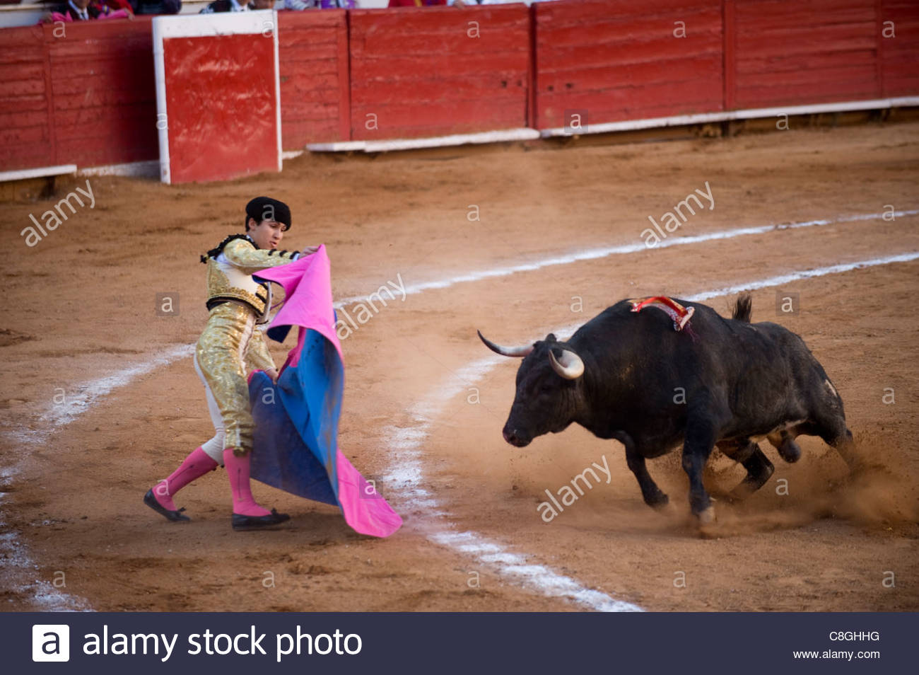 At a bullfight in Mexico City, a bull charges a Matador. Stock Photo