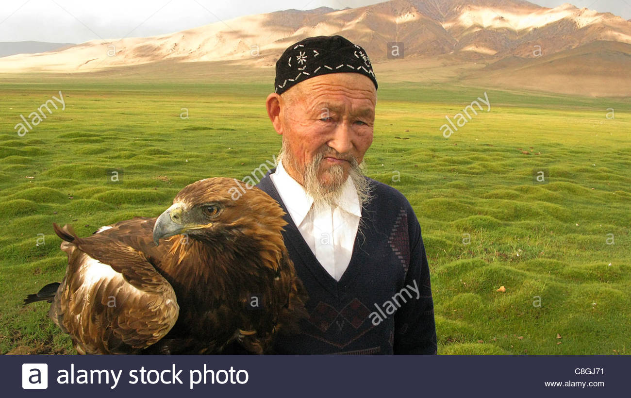 A Kazakh eagle hunter and his golden eagle in western Mongolia. Stock Photo