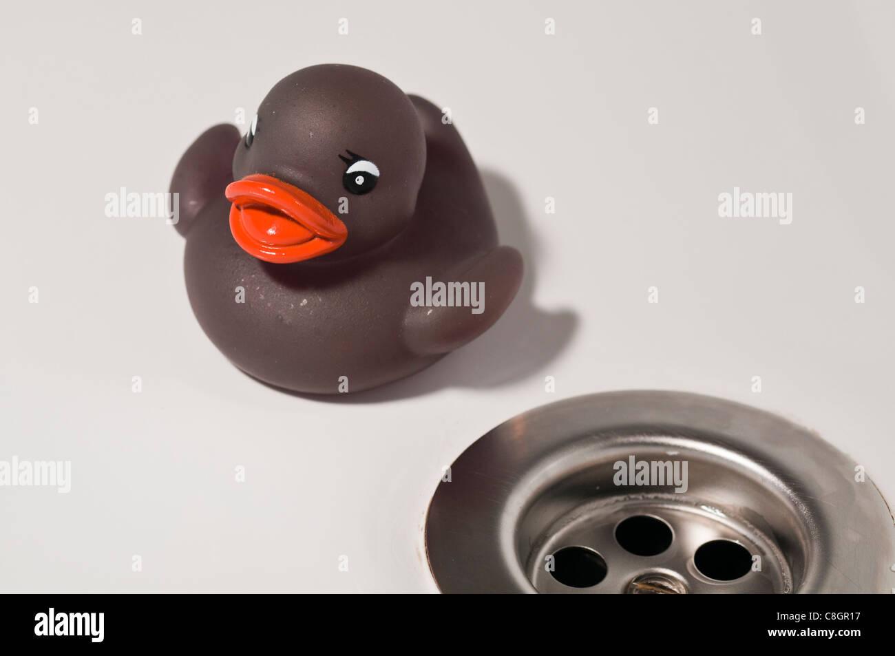 Rubber duck & plug hole - Stock Image