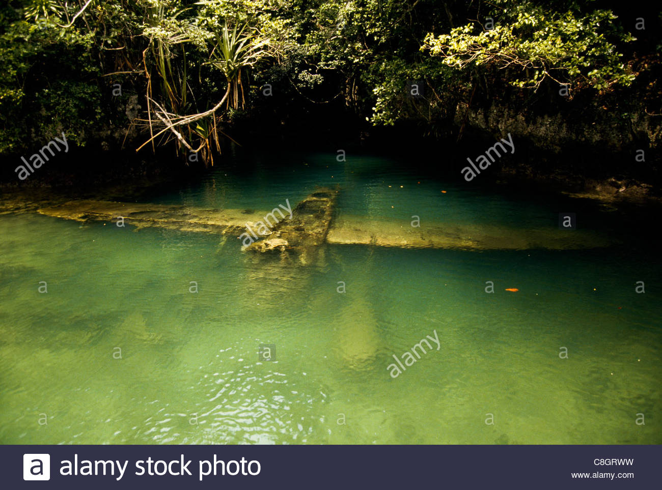 A World War Two military seaplane in a shallow lagoon. - Stock Image