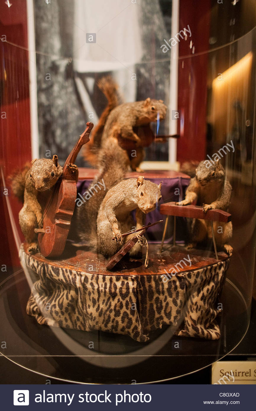 Hank Williams' memorabilia at the Country Music Hall of Fame. - Stock Image