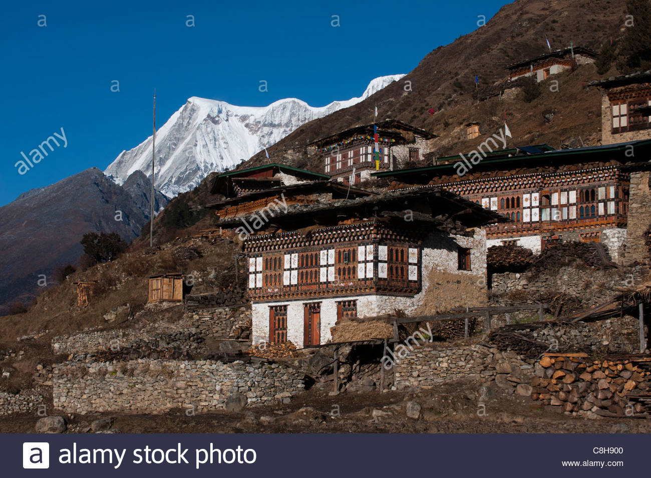 The spectacular village of Laya in Bhutan with Masagang visible behind - Stock Image