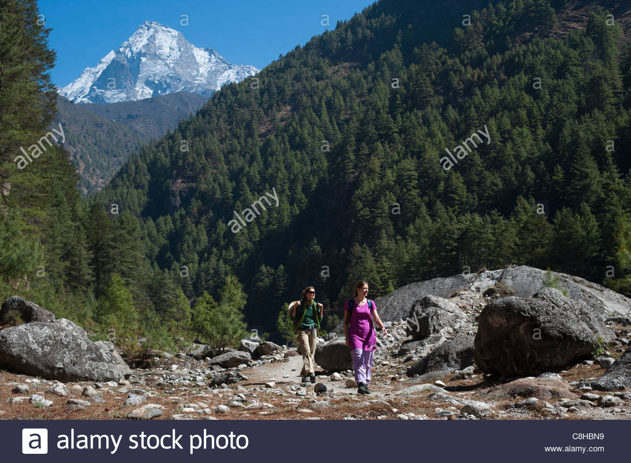 Trekkers on their way to Everest base camp - Stock Image