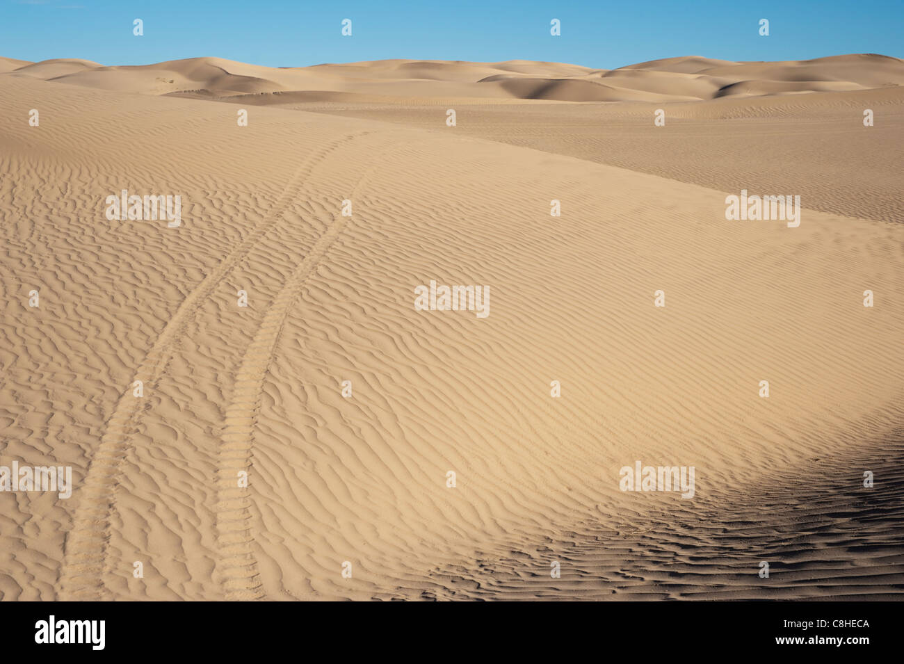 Imperial Sand Dunes Recreation Area - the largest sand dunes in North America - near El Centro, California, USA Stock Photo