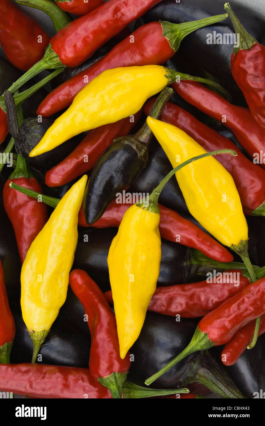 Hot Peppers - Stock Image