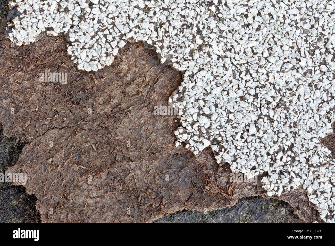 Asphalt shingle impregnated with asbestos fibers, deteriorating from age, weather & environment. - Stock Image