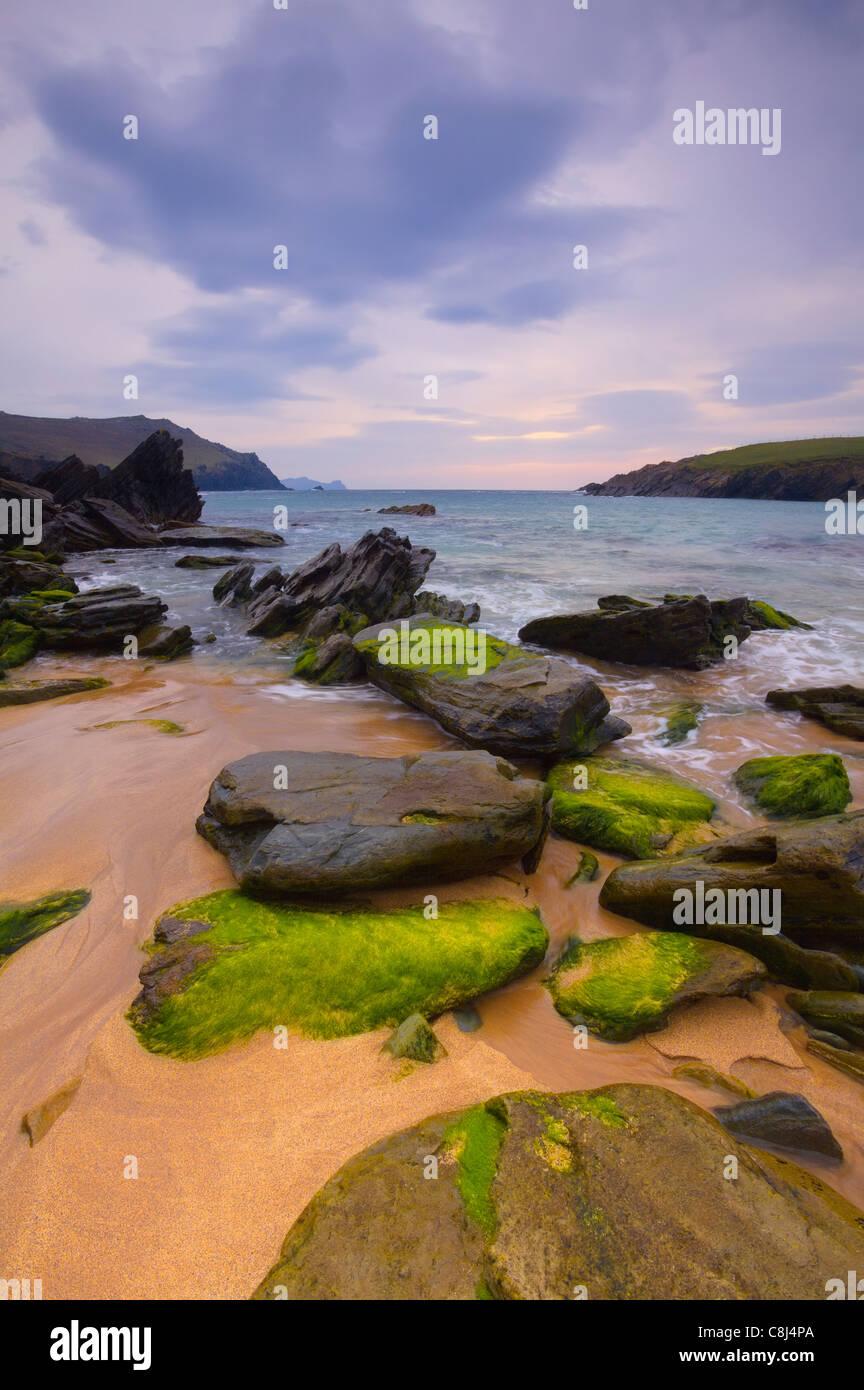 evening light illuminates West Kerry Costline at Clogher Head, Co.Kerry, Ireland - Stock Image