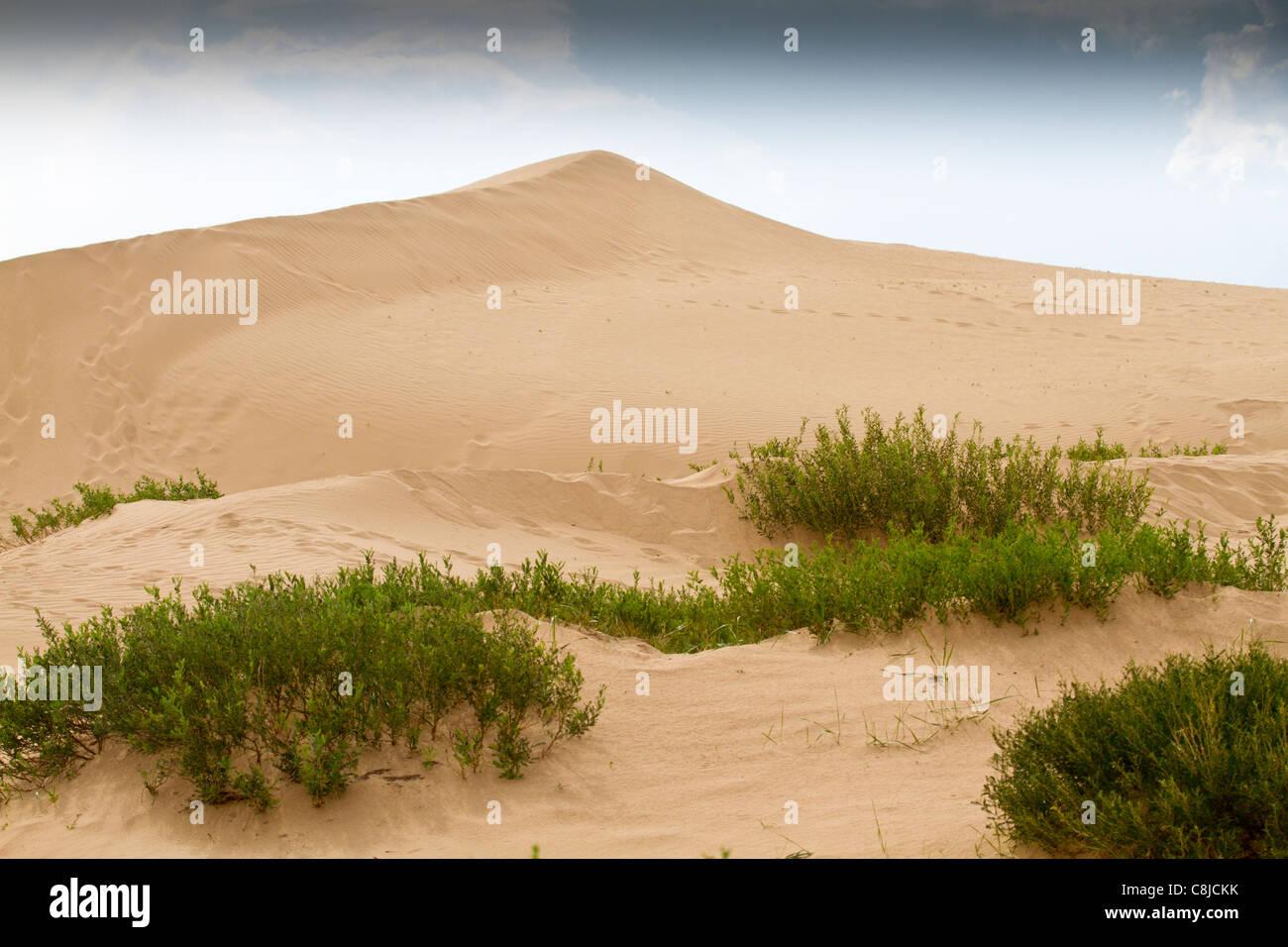 Gobi desert sands in Mongolia - Stock Image